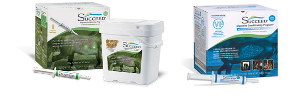 Where to Buy SUCCEED products