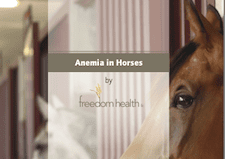 Get Your Free Anemia in Horses E-Book