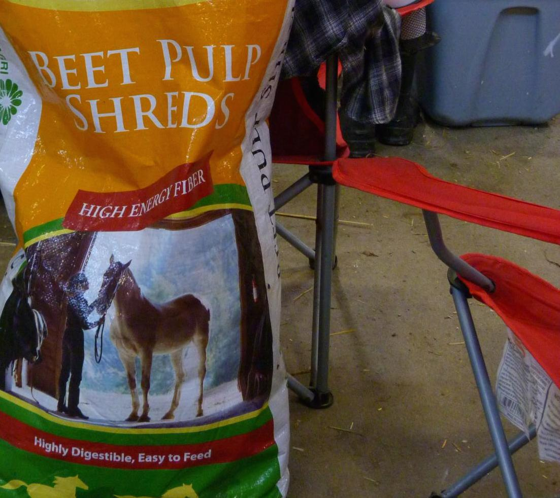 MM #38: Feeding Horses Dry Beet Pulp Will Cause Choke (or