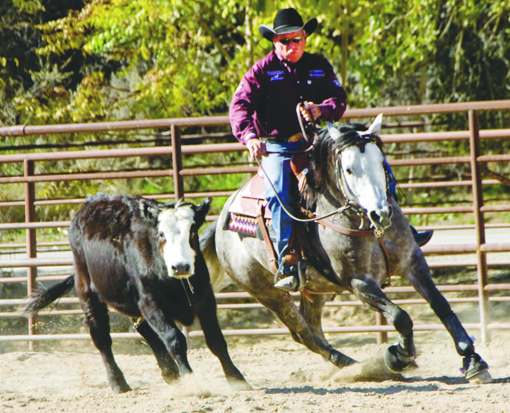 Ted Robinson's Top 5 Tips for Raising Healthy Futurity Horses