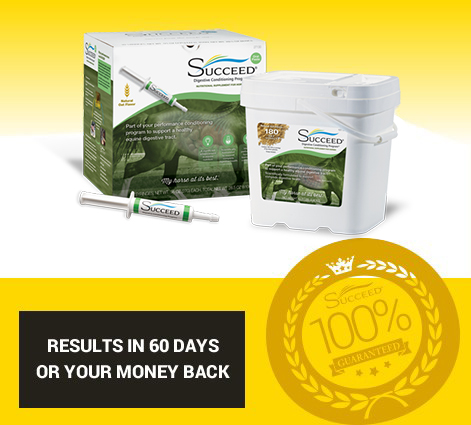 results in 60 days or your money back
