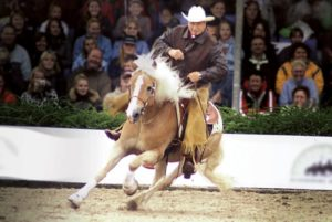 Monty Roberts action 625x405