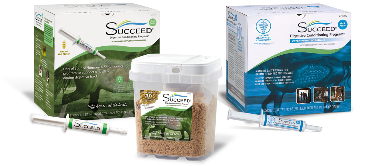 SUCCEED products