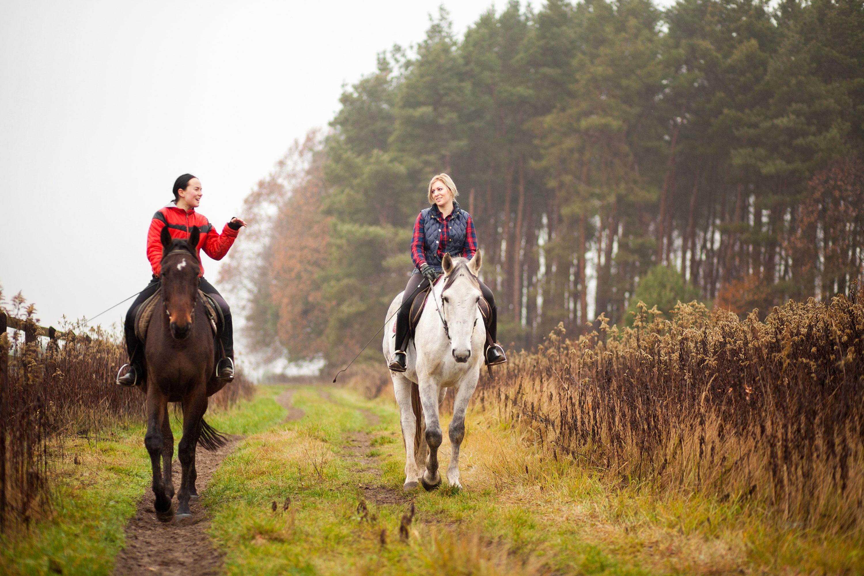 Two Ladies on Horses - Equitation Science