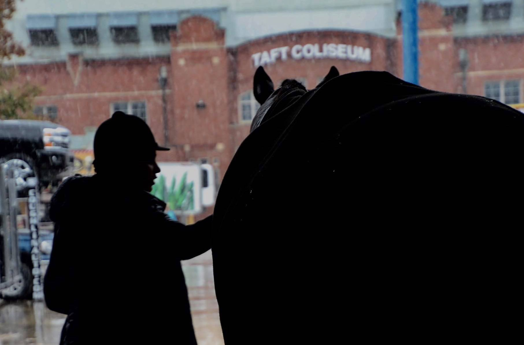 Rider and horse in show barn.