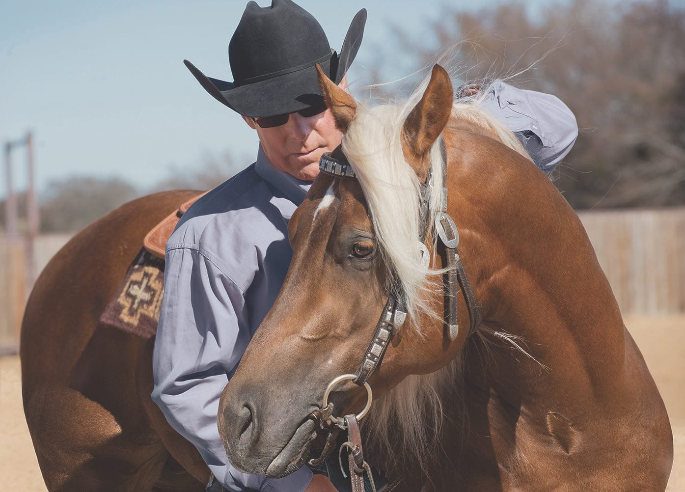 Ron Ralls Serious Horse People